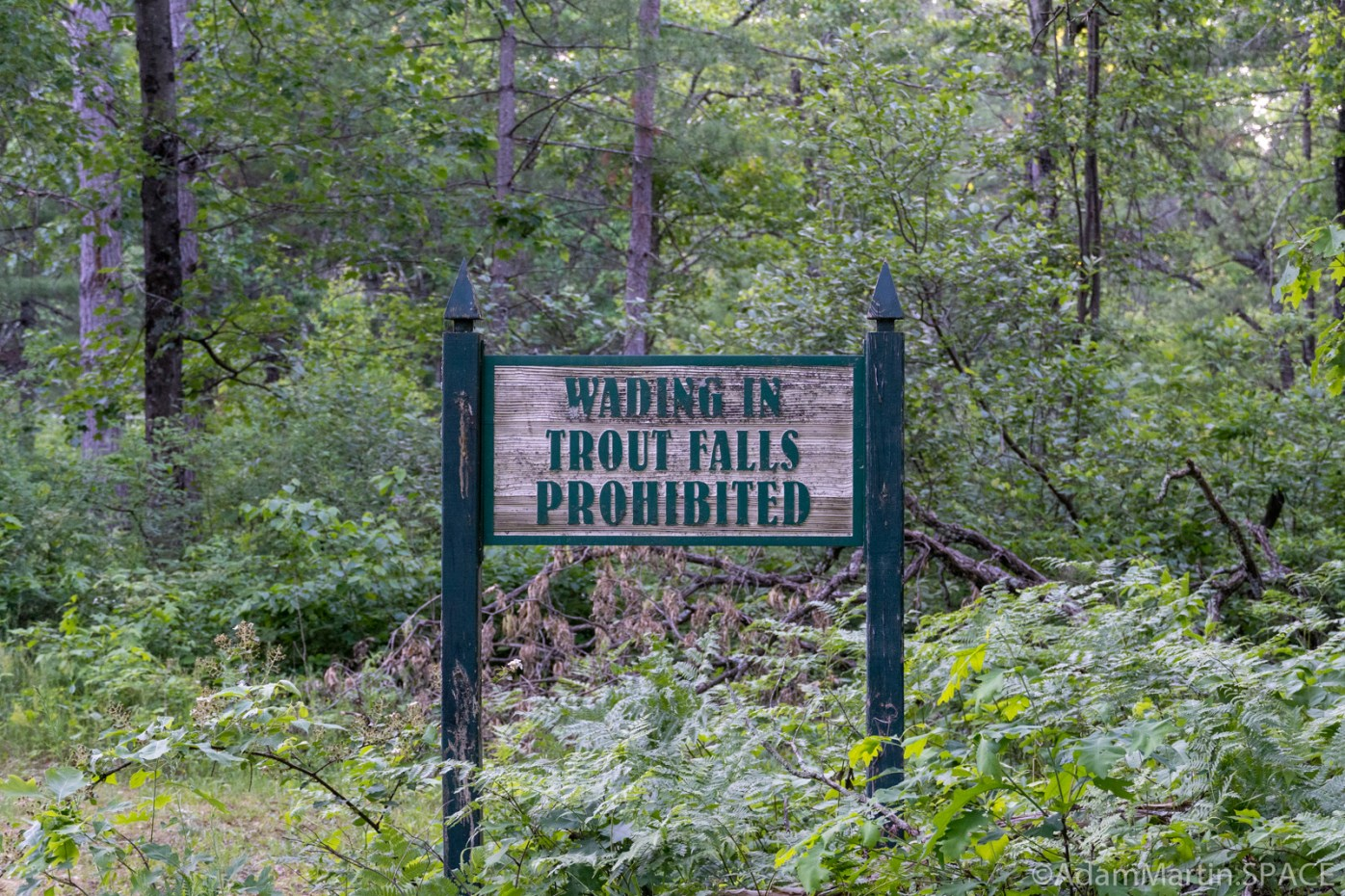 Trout Falls - Sign near the falls