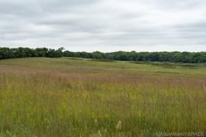 Homestead National Historical Park - Prairie Views