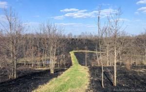 Yellowstone Wildlife Area after prescribed burn