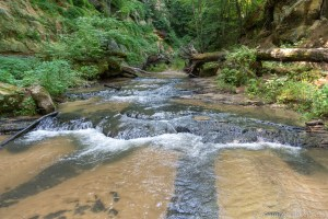 Small shelf-type falls while hiking down Roaring Creek