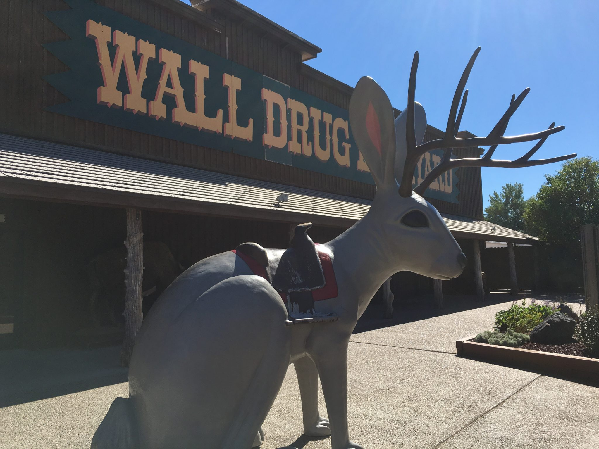Wall Drug - Jackelope statue