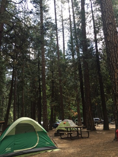 Loved this little camp site. Upper Pines was PACKED but not as loud as I was expecting.