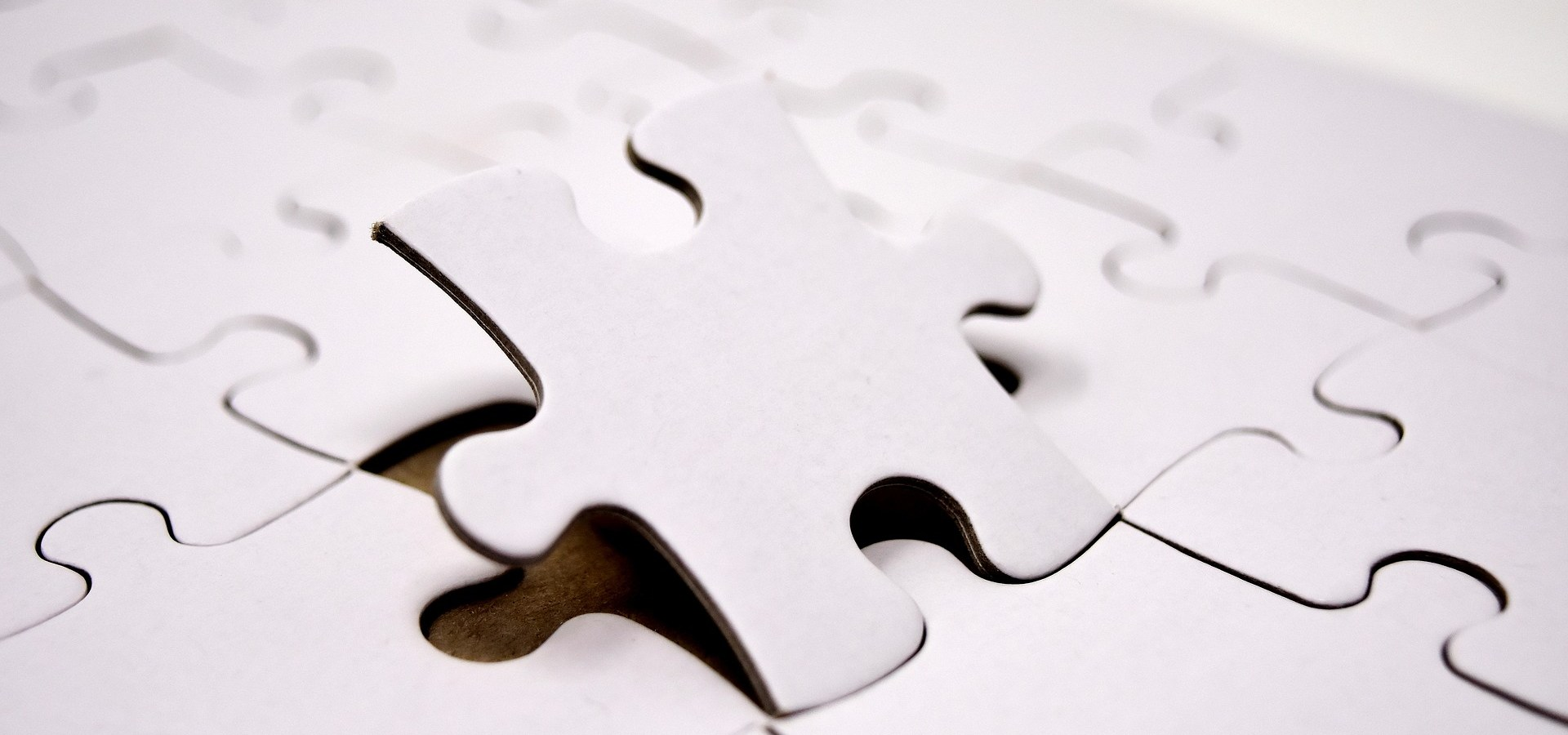 Dan Pink - puzzle motywacji
