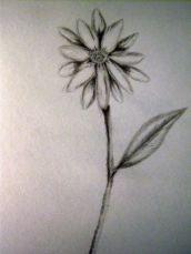 P_Flower