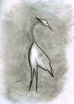P_Egret