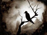 L_Crow