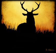 silhouette-deer - Copy