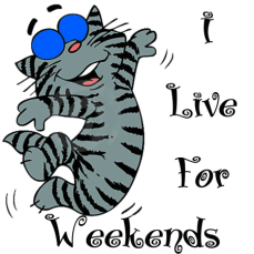 cat-i-live-for-weekends-450