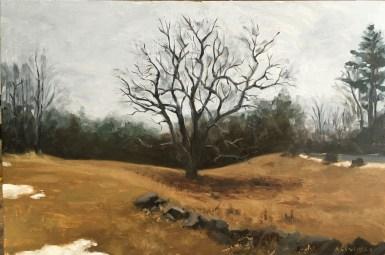 """untitled (tree in field) : Oil on wood. 12""""x18"""" 2016"""
