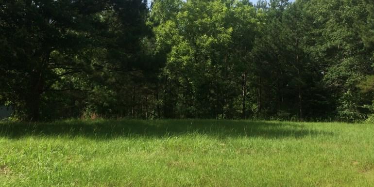 40-acres4