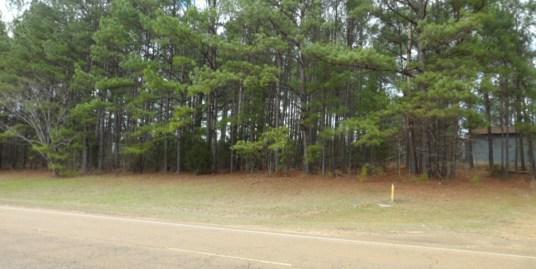 3+/- Acres Highway 19 S  Kosciusko, Ms 39090