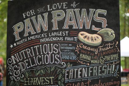 Paw Paw Sign for the 3rd Annual Paw Paw Festival