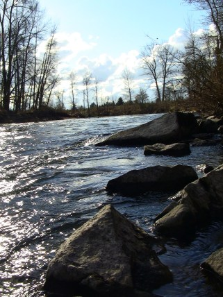Knights Bridge Park (Canby, Oregon, February 2nd, 2013)