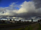 Wandering Canby