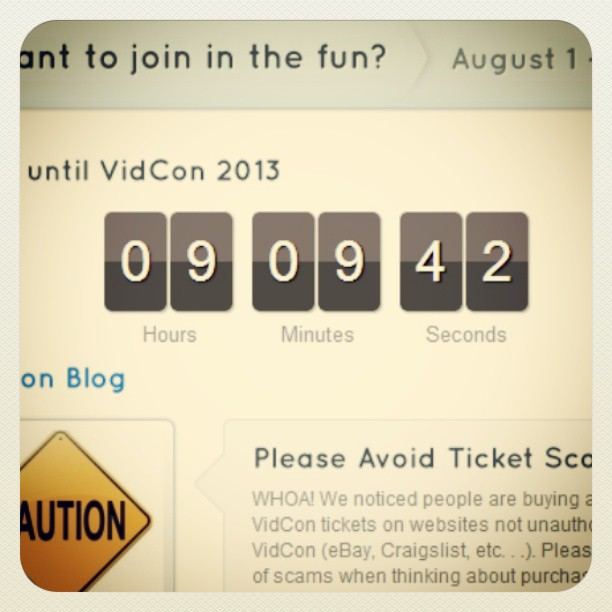 The Road to Vidcon 2013