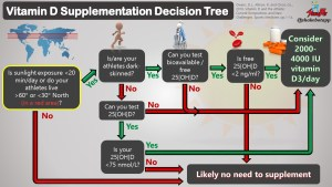 Vitamin D Supplementation Decision Tree