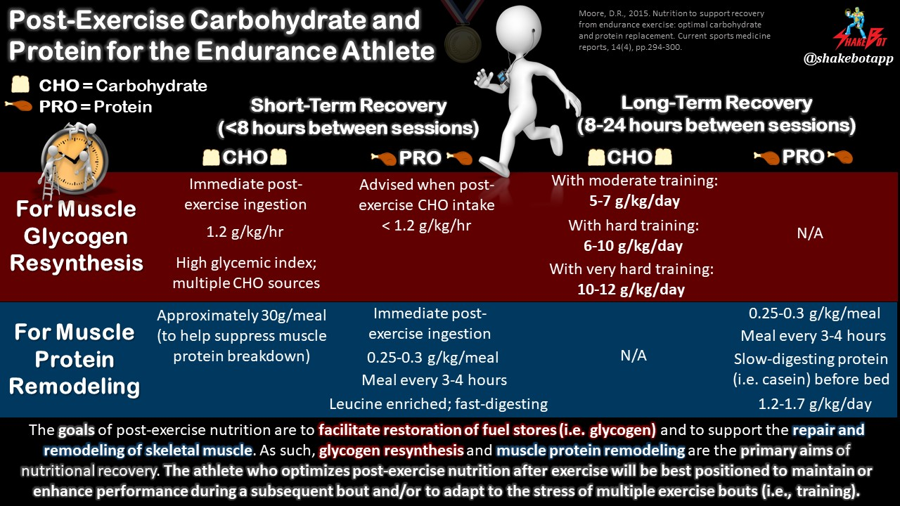 Nutrition to Support Recovery from Endurance Exercise: Optimal Carbohydrate and Protein Replacement