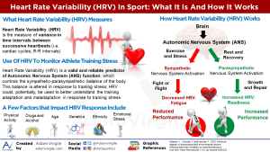 Heart Rate Variability (HRV) in Sport: A Review of the Research