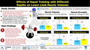 Effects of Squat Training with Different Depths on Lower Limb Muscle Volumes
