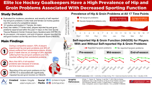 Elite Ice Hockey Goalkeepers Have a High Prevalence of Hip and Groin Problems Associated With Decreased Sporting Function
