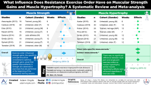 What Influence Does Resistance Exercise Order Have on Muscular Strength Gains and Muscle Hypertrophy? A Systematic Review and Meta-analysis