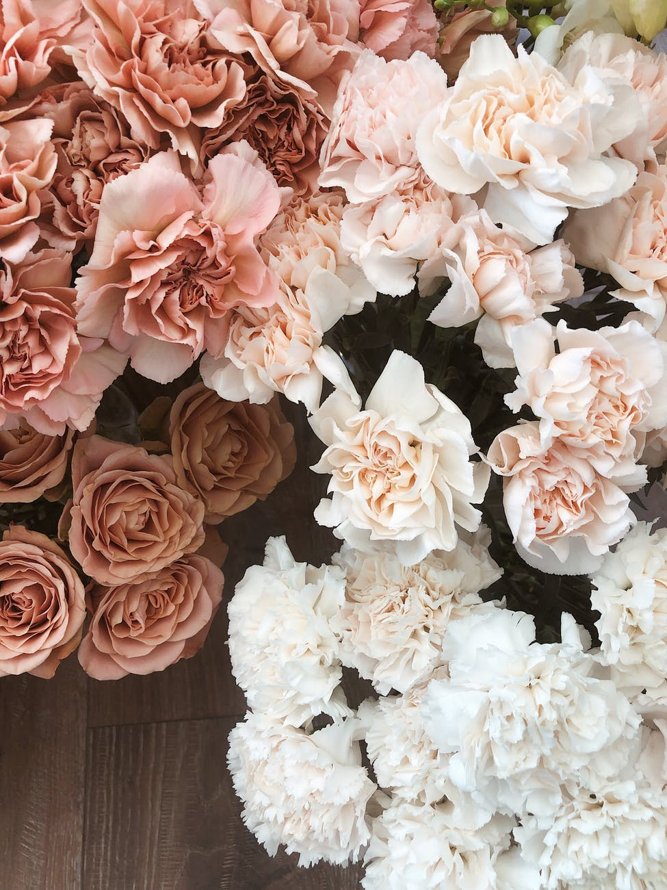 gentle lush floribunda flowers on floor