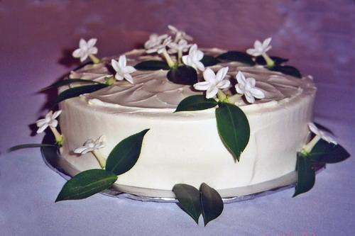 stephanotis-grooms-cake2