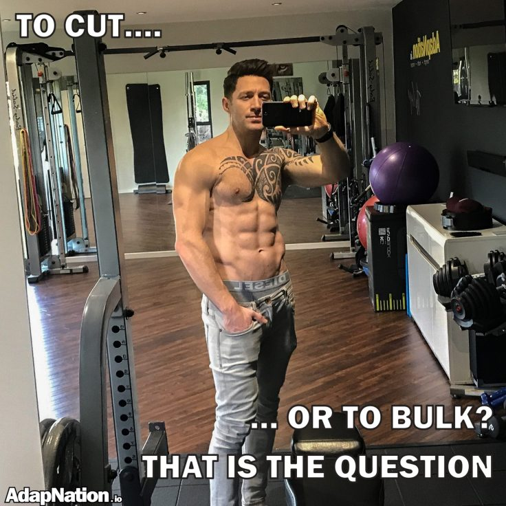To cut or to bulk?
