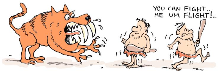 Fight or Flight Cartoon