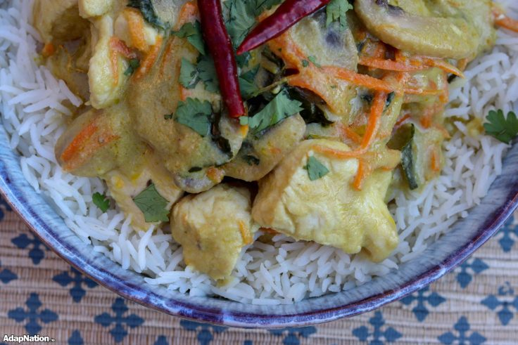 Quick & Easy Chicken Thai Green Curry p4