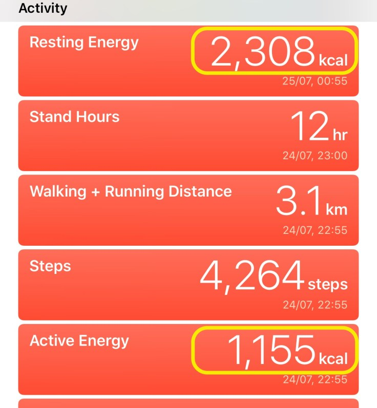 Apple Health App Active Energy