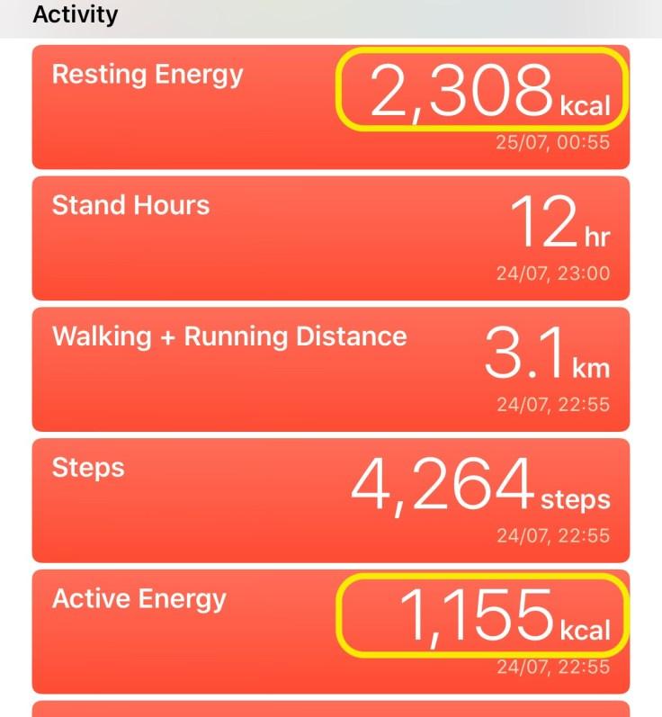 Apple Health App Active Energy