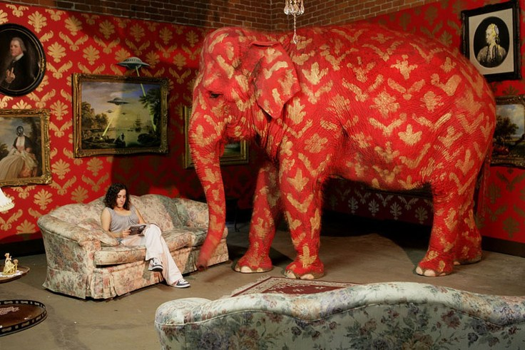 Elephant in the room - time to have more calories