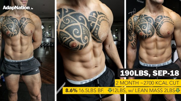 Steve Katasi Body Journal