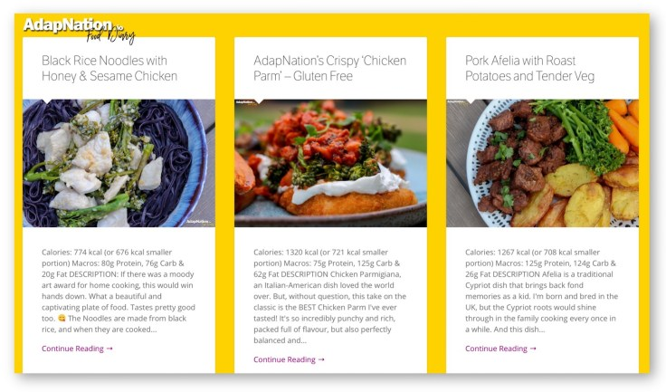 AdapNation Food Diary Feature