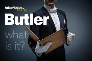 What is AdapNation's Butler?
