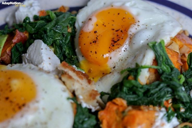 AdapNation's SP, Chicken, Egg & Veggie Hash Medley p2