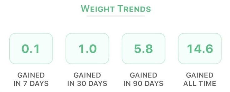Body Weight and stats dashboard