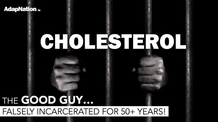 Cholesterol demonised