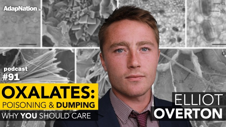 #91: Oxalate Poisoning & Dumping – Why YOU Should Care ~Elliot Overton (part 1)
