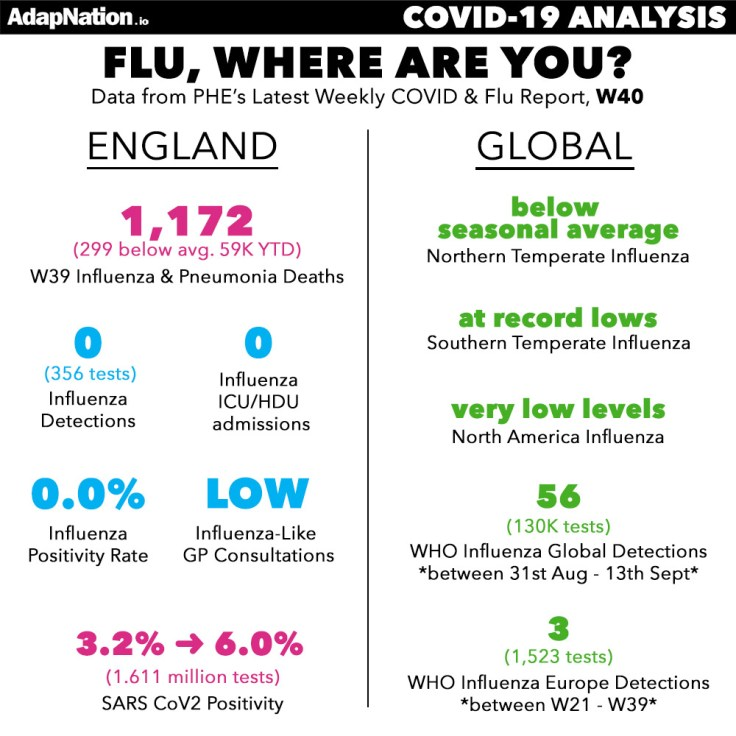 Flu statistics in England
