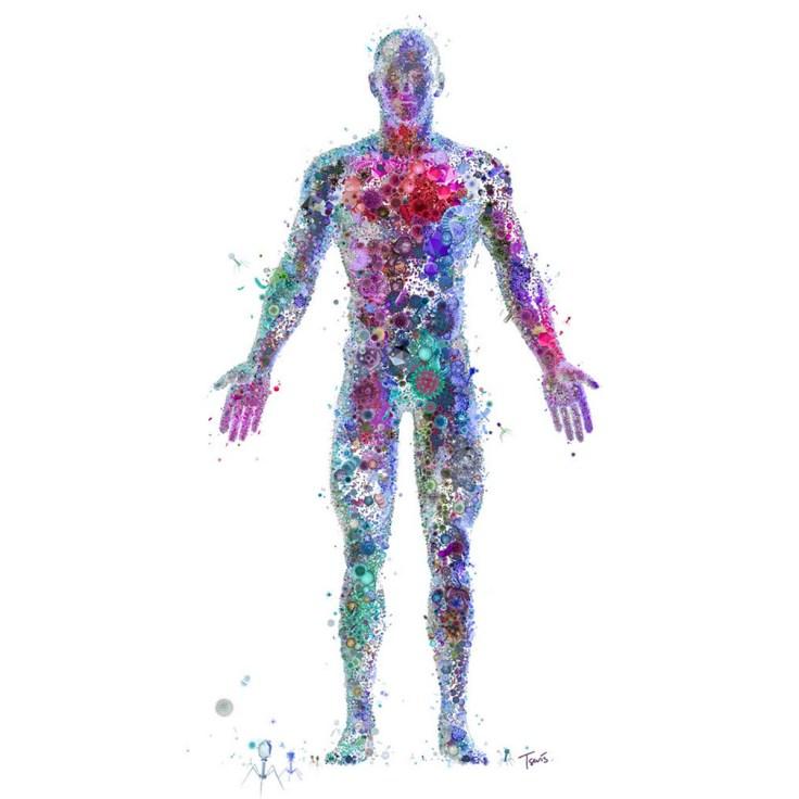 Human Virome