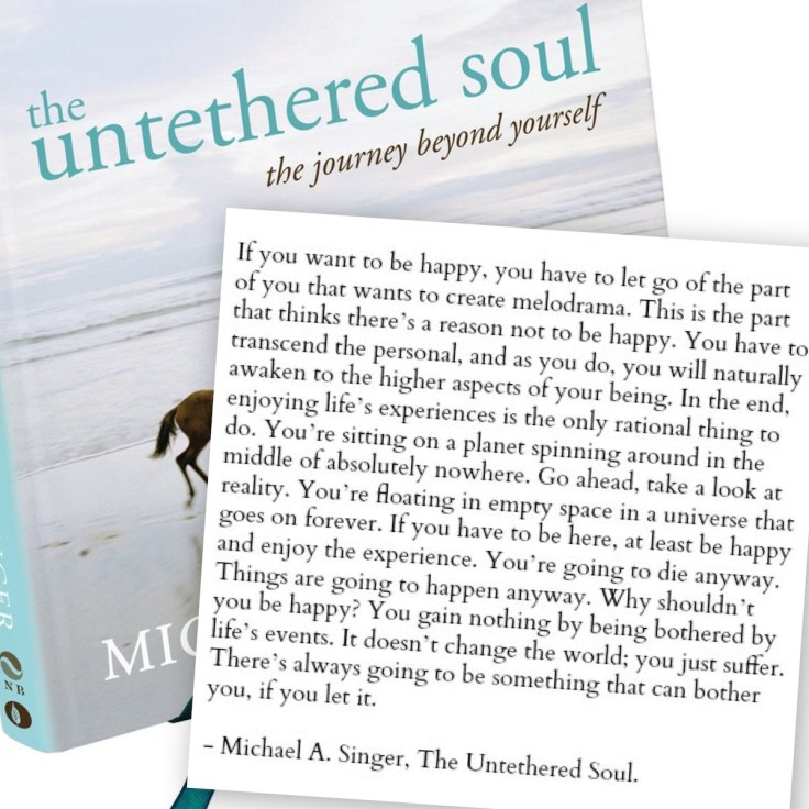 Untethered Soul Happiness Quote