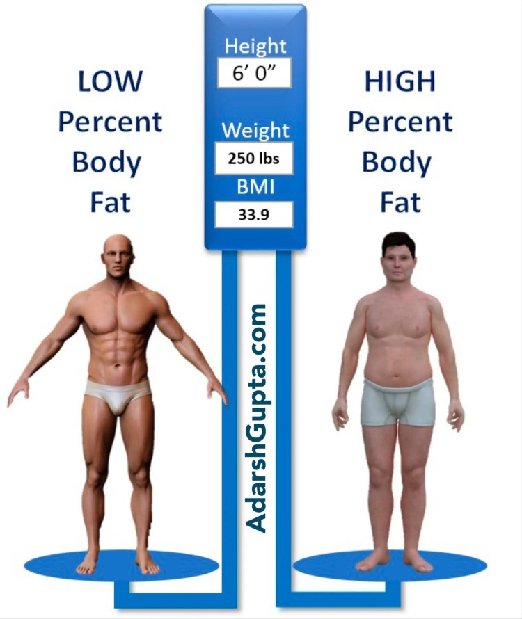 Percent Body Fat vs. BMI