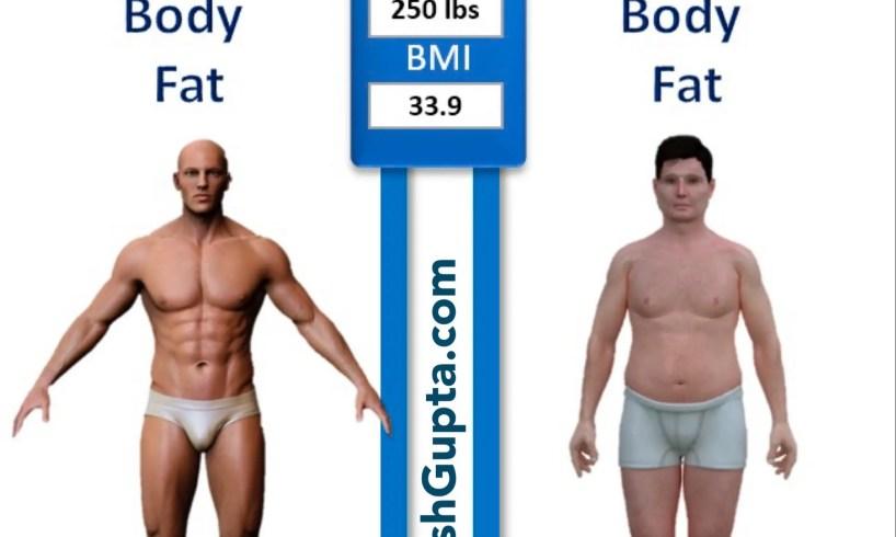 adarshgupta.com - percent body fat vs. BMI