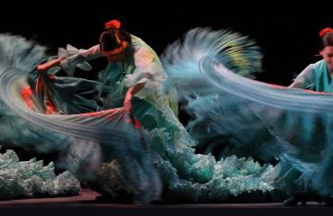 Flamenco Jardines de Zoraya Adarve Travel