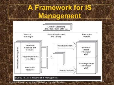 IS management