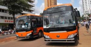 pioneer-easy-bus.
