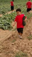Farms, Hiking, Garden things to do