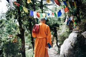 monk in orange robe a day of zen